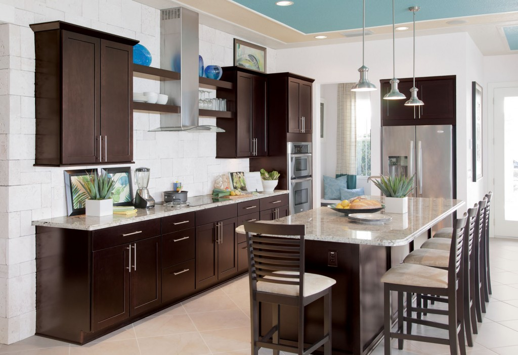 Brown gorgeous kitchen cabinets with modern appliances for Kitchen cabinets and design