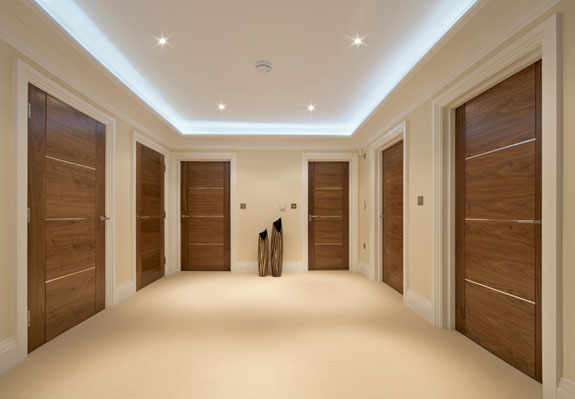 Flush Door Designs