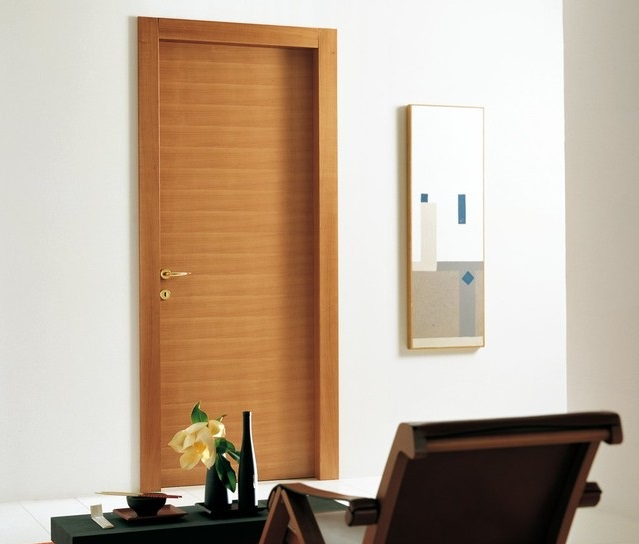 Modern Flush Door Design